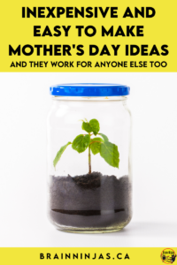 Are you looking for easy to make and inexpensive projects for Mother's Day (or Father's Day or Grandparents Day or basically anyone appreciation day)? As upper elementary teachers, this event usually gets overlooked. We came up with a list of some easy peasy (and cheap) gifts we made over the years. Come see if one of them will work for your class this year.